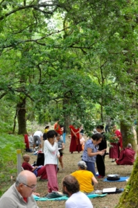 2-8-Aug-2017 - Buddhist-Phil-099
